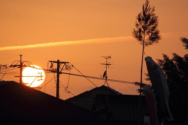 夕日とこいのぼり