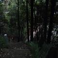 湯の鶴温泉黄昏時・・ほたる橋へ