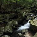 写真: 小滝への途中の流れ
