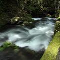 座頭滝・・前日の大雨で多量の水