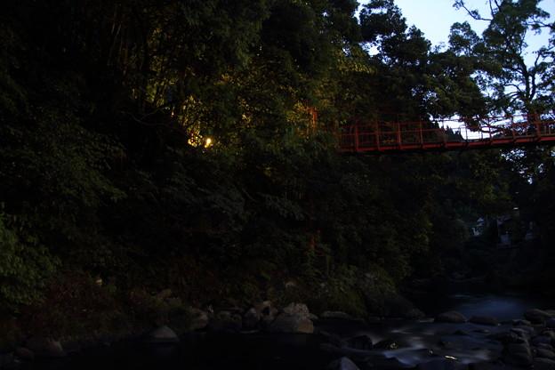 ほたる橋・・ほたるは2~3匹くらい