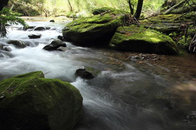 写真: 箱滝上流の流れ