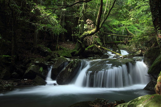 箱滝の下流の流れ