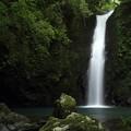 写真: 小滝・・滝つぼのすぐ近くまで行ってみる
