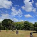 Photos: 石像と夏空
