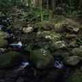 写真: 寒川水源の下流・・雨が少ない
