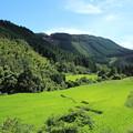 Photos: 寒川の棚田