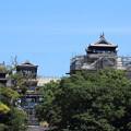 Photos: 今の熊本城