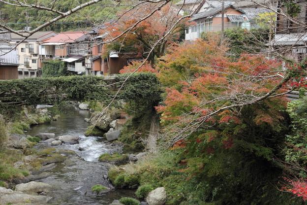 湯の鶴温泉の紅葉