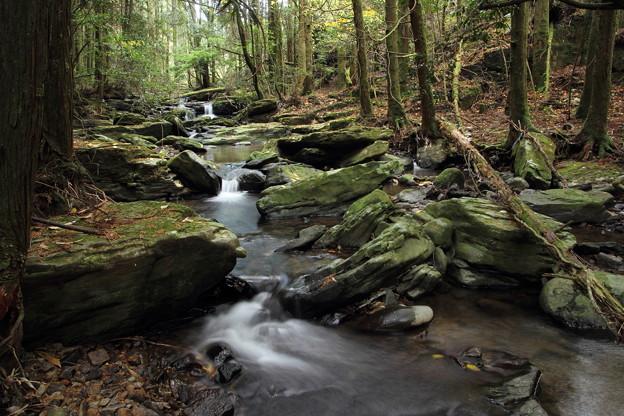 秋の渓流・・落ち葉しかないけど