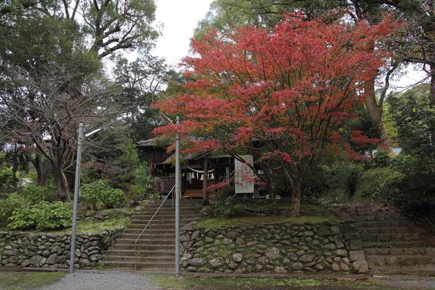 諏訪神社の紅葉