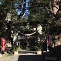諏訪神社の正月