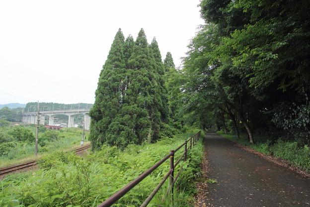 おれんじ鉄道、新幹線、遊歩道