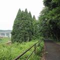 Photos: おれんじ鉄道、新幹線、遊歩道