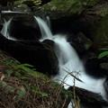 Photos: 箱滝下流