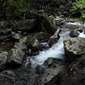 小滝への道のわきの渓流
