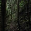 Photos: 小滝への道