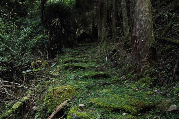 大滝へのきつい坂道