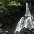 大滝・・写真では高さが分かりにくい