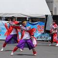 Photos: よさこい祭り