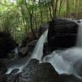 Photos: 今日は滝の右側から・・箱滝