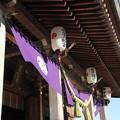 Photos: 宮飾り・・八幡神社