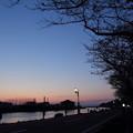 Photos: 水俣川岸の桜