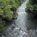 大雨で増水の久木野川