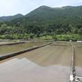 田植えの準備・・深川