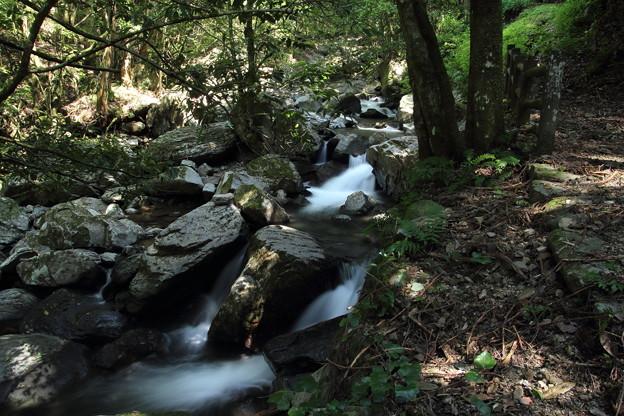 小滝へ行く道