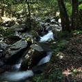 Photos: 小滝へ行く道
