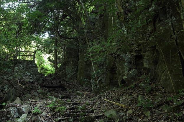 大滝への道