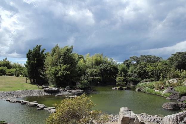 エコパーク水俣竹林園