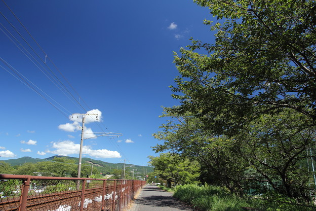 遊歩道から夏空