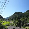 Photos: 田んぼ・・仁王木