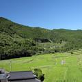 Photos: 田んぼ・・久木野