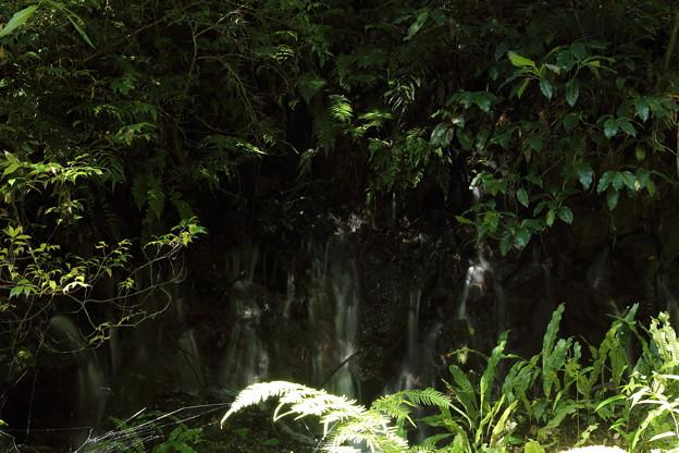 岩の隙間から水が湧く・・寒川水源