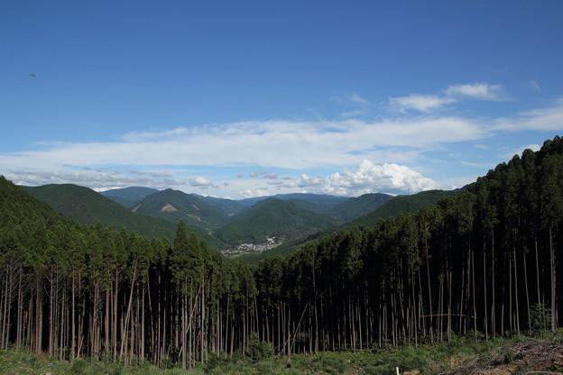 中尾山~湯出の山道から