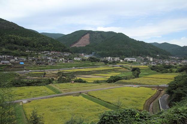 久木野田園風景・・稲刈りやってます