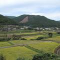 Photos: 久木野田園風景・・稲刈りやってます