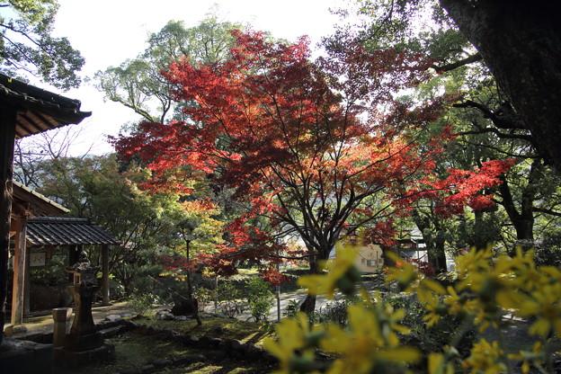 諏訪神社・・長野