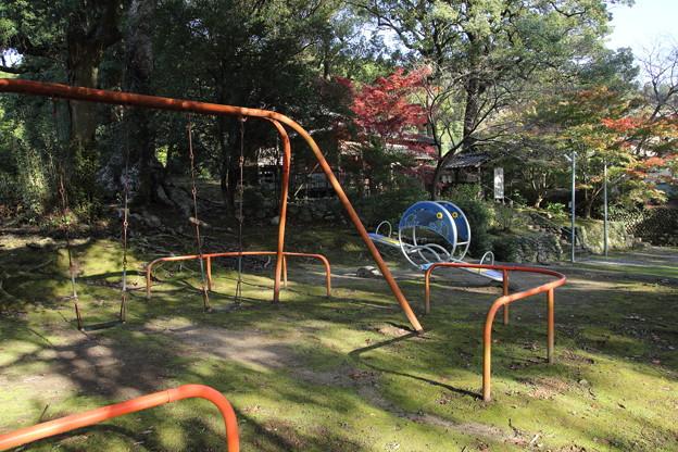 Photos: 神社には遊具がある?