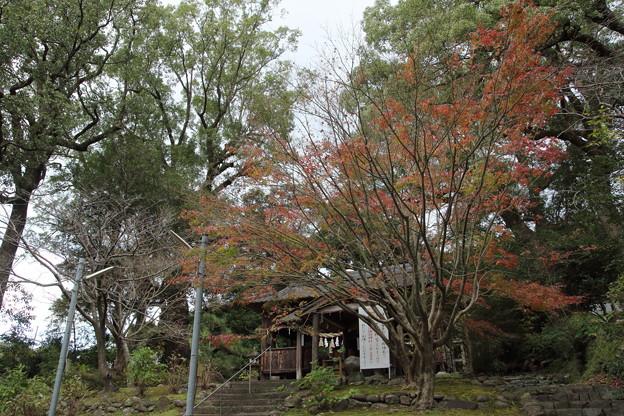 紅葉・・諏訪神社もう過ぎていました