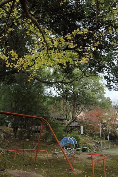 紅葉・・諏訪神社