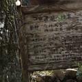 Photos: 市渡瀬神社の祭礼