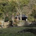 Photos: 市渡瀬神社