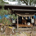 Photos: 初詣・・長野諏訪神社