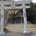 Photos: 初詣・・丸島神社
