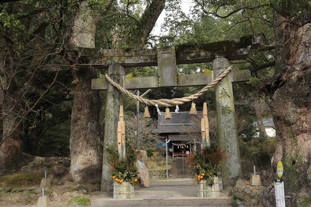 初詣・・長野諏訪神社