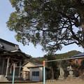 Photos: 初詣・・陣内加藤神社